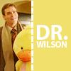 nightdog_barks: (Wilson with Duck)