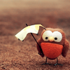 owlscannotbefooled: (Tiny Owls Love Umbrellas)