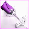 acelightning: purple rose with chrome stem & leaves (rose)