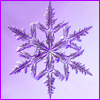 acelightning: microphotograph of a snowflake (snowflake)