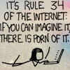 """ohtheclevernessofme: a panel of the comic XKCD, reading """"It's rule 34 of the internet: if you can imagine it, there is porn of it"""". (this may sound a bit odd but...)"""