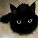 killing_rose: black kitten that looks like ball of fluff with eyes (Kitty eyes)