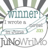 annayork: (JuNoWriMo Winner)