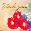 denyce: (stock: thank you- flowers)