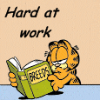 kj_svala: (Garfield hard at work)