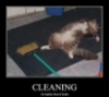 whytewytch: (cleaning is exhausting)