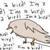 pointytilly: (I'M A BIRD)