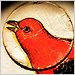 nightdog_barks: (Red Bird)