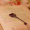 snarky: (book + key)