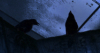 nevermoreraven: Photo of ravens sitting in rafters (Default)