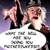 ashstoner_021: (Dumbledore)