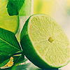 meloukhia: A halved lime, with a mint leaf next to it (Limes)
