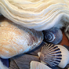 lizcommotion: white handspun yarn next to various seashells (yarn white handspun)