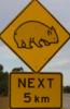 snarkysneak: (Wombat Crossing)