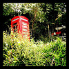 thedivinegoat: A photo of a red photo box behind a hedge with some railway signs to the right of it. (My Photo - Phone Box)