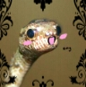 railenthe: happy OMG snake (OMG snake)