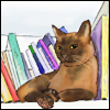 vilakins: (books with jasmin)