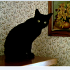 lex: My black tailless cat on top of a piano, beside a painting of daylilies. (Lady Nostalgia)