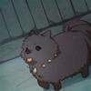 oldmodel: (pomeranian puppy)