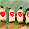 deense: (penguins love)