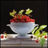 loligo: raspberries (berries)