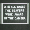 """emceeaich: A film title placard reading: """"3. In all cases the beavers were aware of the camera."""" (beavers)"""