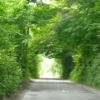 tamela_j: (Travel--Ireland)