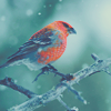 soulforophelia: (winter: bird)