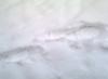 antisoppist: (snow)