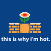 erika: (games: why i'm hot)