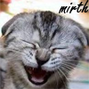 "healingmirth: tabby kitten, ""The Original Laughing Cat"" (mirth)"