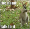 slyyder: (Roo Talk to hand)