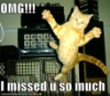 slyyder: (lolcat OMG missed you)