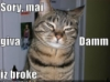 slyyder: (LOLcat dont give a damn)