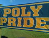 kate: A lawn sign that says POLY PRIDE (Text: Poly Pride)
