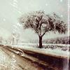 regsi_ruka: (Winter)