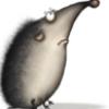 naboru: (Generell / Hedgehog #1)