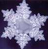 marcicat: snowflake (love water)
