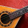 caycilia: (mandolin)