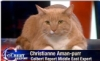 "ajnabieh: A large orange cat with the text ""Christianne Aman-purr, Colbert Report Middle East Correspondent"" (amanpurr)"