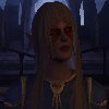ext_464358: Elf Mage, Not excatly known for kindess towards humans. (Mal & Dom)