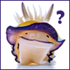 feathercircle: Purple and yellow nudibranch looking at viewer.  Text: ? (?)