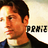 lovelythings: david duchovny as Mulder and text Don't panic (don't panic)