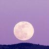 musyc: Stock photo of full moon over hills, tinted purple (Purple: Moon)
