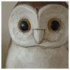 polls: carved wooden owl (owl, polls)