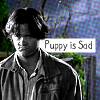 blue_icy_rose: (Sam is a sad puppy)