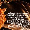 nomanselizabth: (eagles soar)
