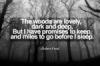 paulak_rumin8: Robert Frost (miles to go)