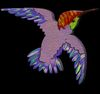 birdiesbeastiesnbugs: (Default)