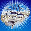 spiffystuff: (brain)